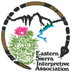 ESIA logo