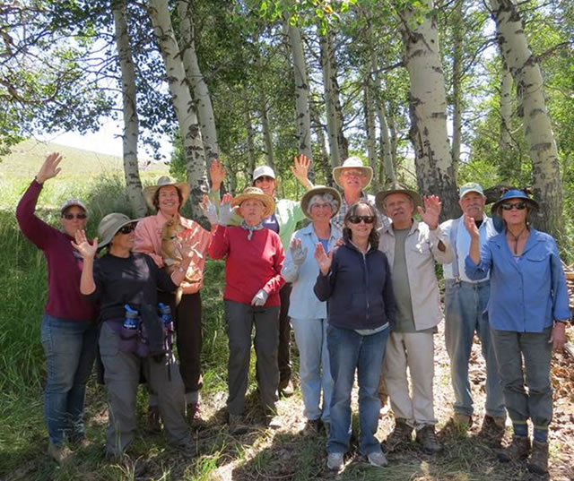 Group of ESIA volunteers out in the aspen trees