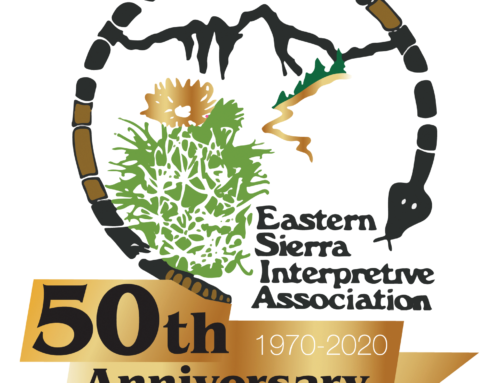 ESIA Celebrates 50th Anniversary as Nonprofit Partner with Inyo National Forest